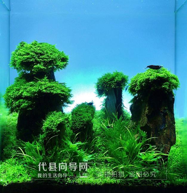风景生水画手机壁纸
